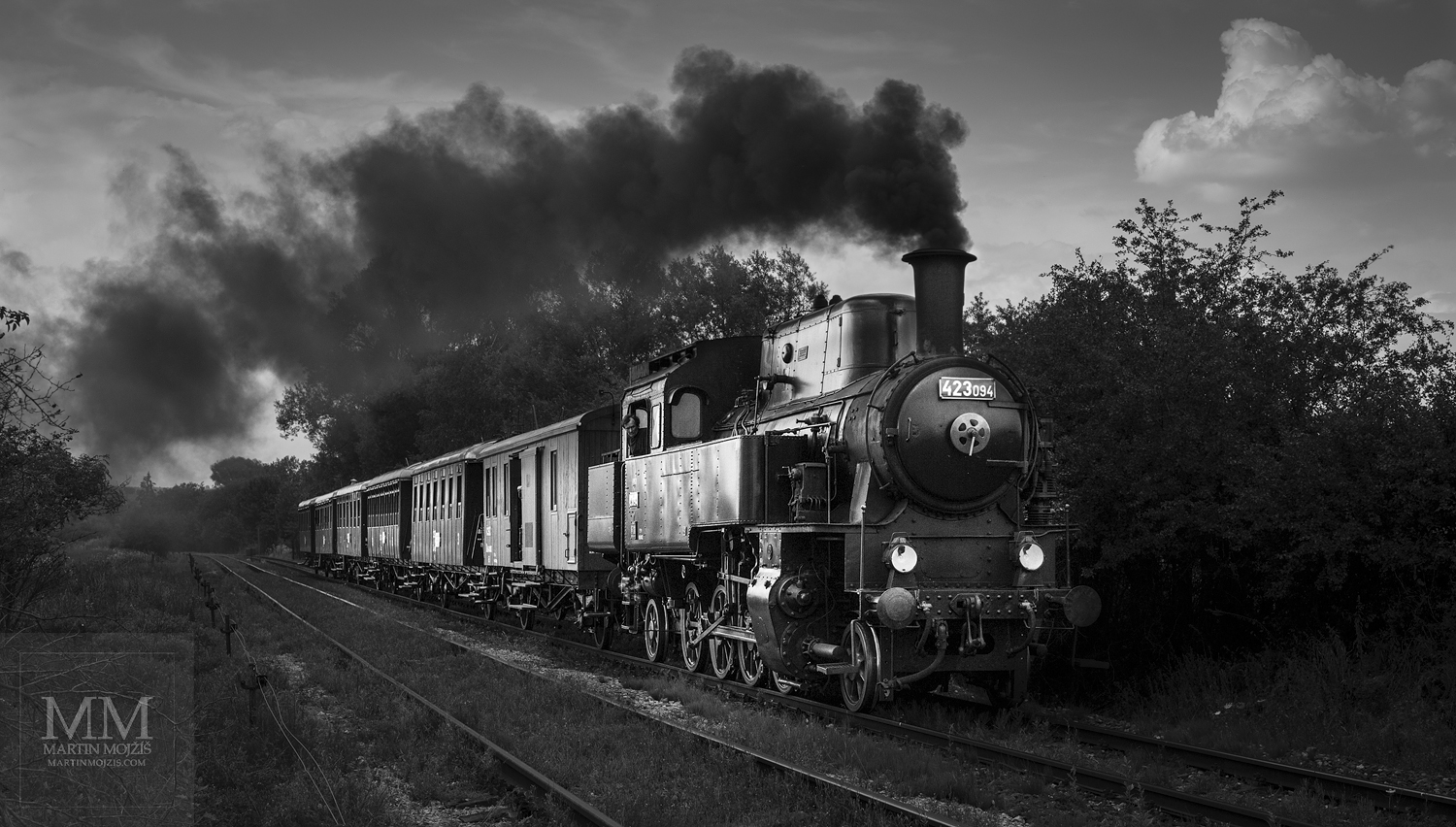 Large format, fine art photograph of smoking steam train. Martin Mojzis.