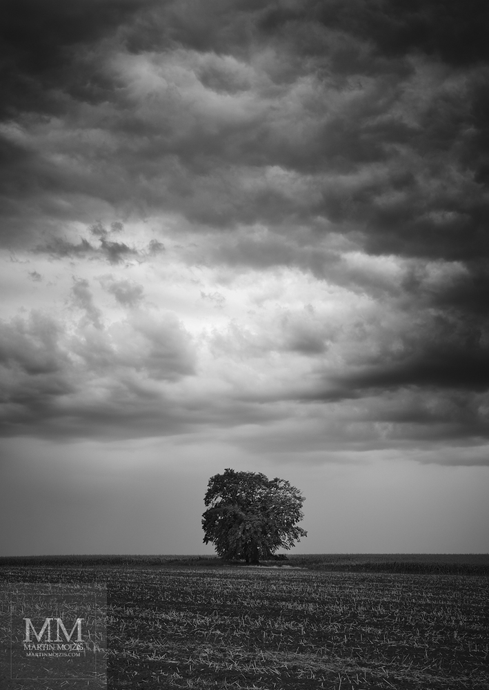 Large format fine art black and white photograph of the landscape. Martin Mojzis.
